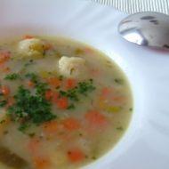 Zeleninová polévka s noky recept