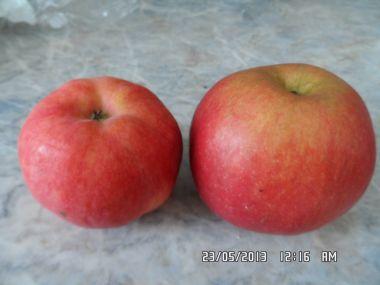 Jablečný perník 1