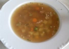 Polévka z mletého masa ( rychlá ) recept