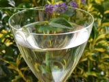 Levandulovo  mátový sirup recept