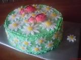 Dětský dort s beruškami recept