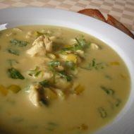 Kari polévka s kuřecím masem recept
