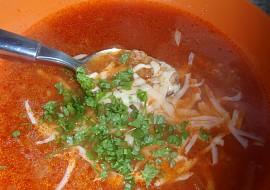 Dobrá rýžová polévka se sýrem expres recept