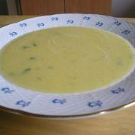 Polévka z dýně hokkaido recept