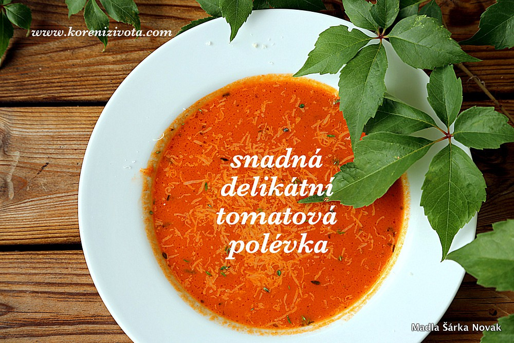 Snadná delikátní tomatová polévka recept