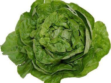 Hlávkový salát a sladko-kyselý nálev