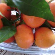 Mandarinkový krém do zákusků recept