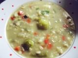 Polévka čtyřsurovinová (zelenina,droždí,ovesné vločky,houby ...