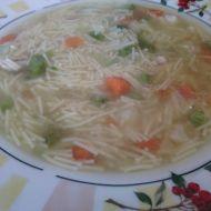 Snadná polévka s kuřecími kousky recept