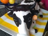 Kráva recept