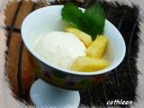 Ananasová zmrzlina recept
