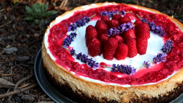 Vanilkový cheesecake s malinami