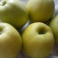 Jablečné placičky s jogurtem recept