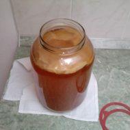 Čajové víno  Kombucha recept
