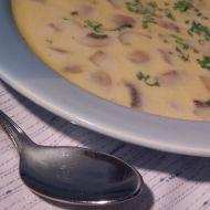 Jednoduchá žampionová polévka recept