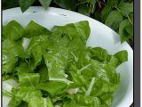 Salát z mladého mangoldu recept