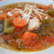 Zeleninová polévka s kuřecím masem recept