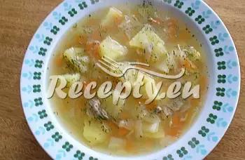 Husí polévka recept  polévky