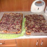 Švestkový koláč z domácí pekárny recept