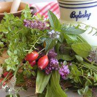 Protizánětlivý bylinkový čaj recept