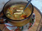 Pórková polévka sváteční se zeleninou a polníčkovým svítkem ...