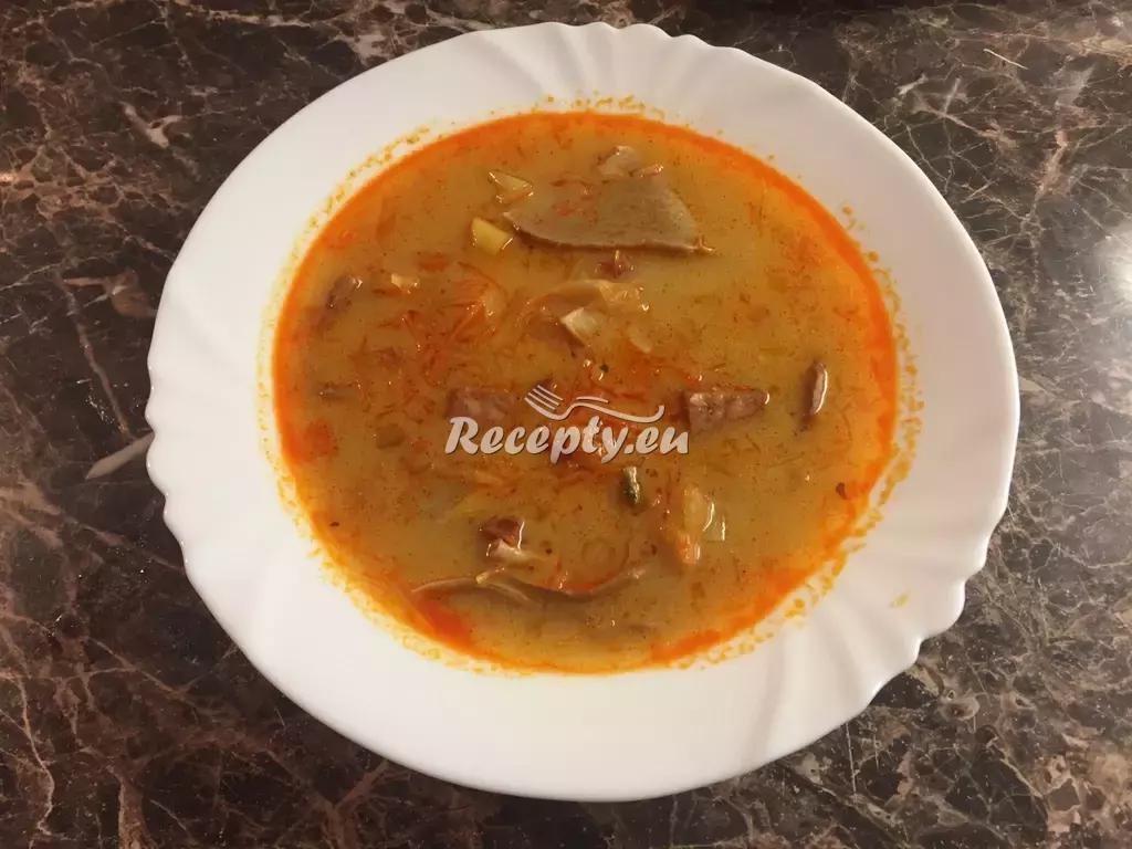 Zelná polévka s mletým masem recept  polévky