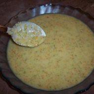 Brokolicová polévka s mrkví recept