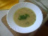 Drožďová polévka s cibulí recept