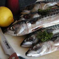 Grilované makrely recept