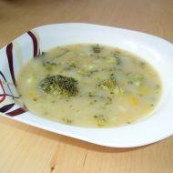Polévka s brokolicí a pórkem recept