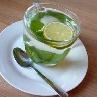 Meduňkový šálek recept