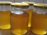 Bezinkový med recept