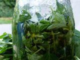 Bylinky v oleji (bazalka, oregano) recept