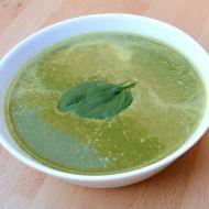 Špenátový krém s žervé recept
