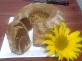 Bábovka ze slunečnicového oleje recept