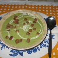 Blesková brokolicová polévka recept