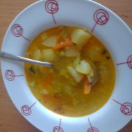 Věrčina zeleninová polévka recept
