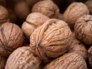 Nepečená roláda s vlašskými ořechy