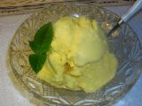 Vanilková zmrzlina z 1000 receptů