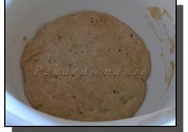 Staré těsto – old dough – pâte fermentée recept