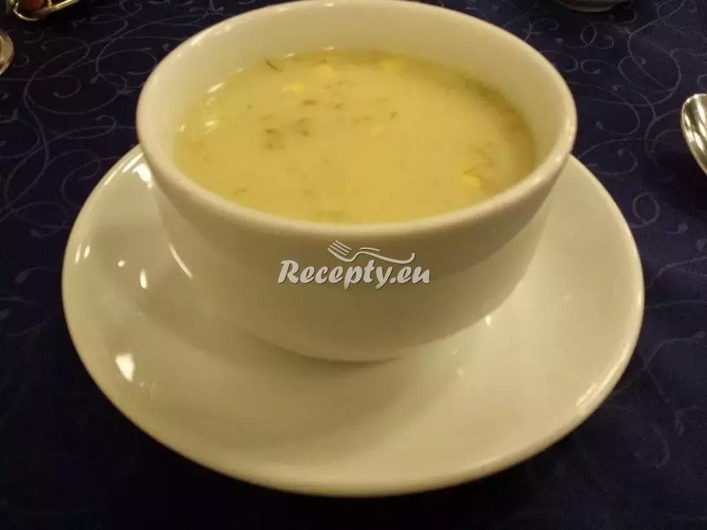 Tvarůžková cibulačka recept  polévky