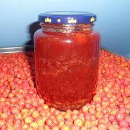 Želé z jeřabin recept