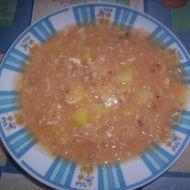 Dietní hustá zelňačka recept