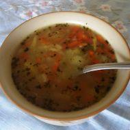 Nejen babiččina polévka recept