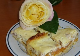 Meruňkovo  reveňový koláč recept