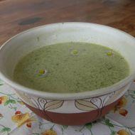 Pampelišková polévka recept