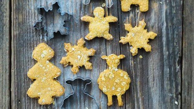 Sušenky pro pejsky