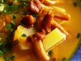 Polévka z lišek recept