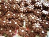 Čokoládové pětilístky s vločkou recept