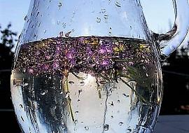Levandulová voda recept